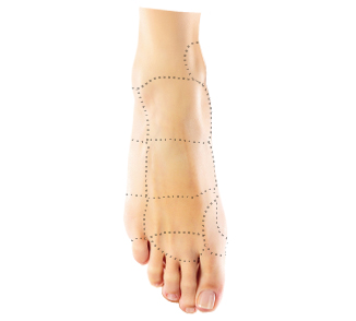 Foot Pain Interactive Tool Takoma Park Riverdale Md Laurel Md Rockville Md